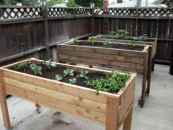 Portable Flower Beds : Your victory garden how you can reduce food budget
